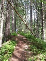 2017_kesäretkiä_kesäkuu_Juupajoki (17)