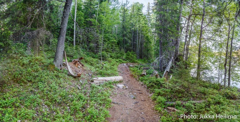 Visit Tampere_tuotekuvauslomake_TUOTEKORTTI NATURE AND FOREST ONE-DAY-RETREAT